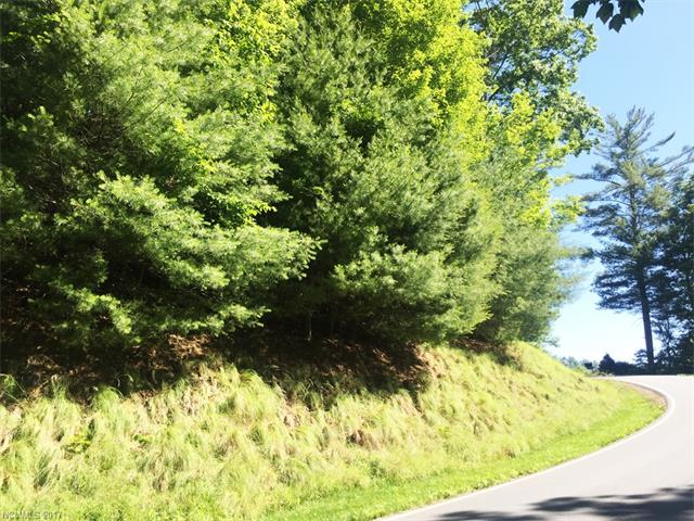 Beautiful, wooded home site with Mountain view potential! 1.04 acre. Build your dream home now or whenever you'd like. Located in Champion Hills, just 8 minutes from downtown Hendersonville. Tom Fazio designed golf course, friendly community and amenities.