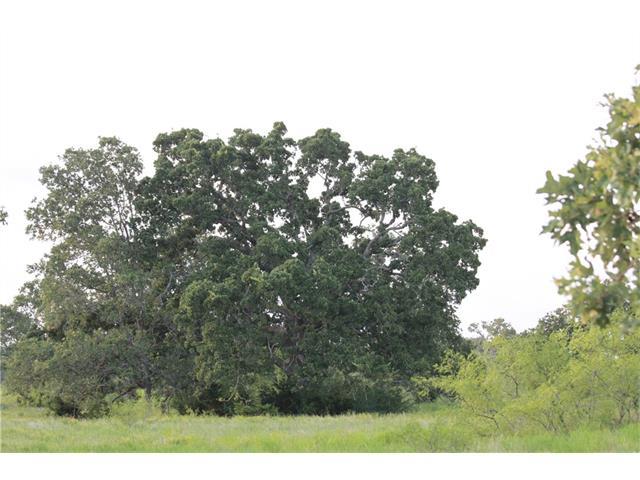 TBD 60 acres Cross Crk, Georgetown, TX 78628