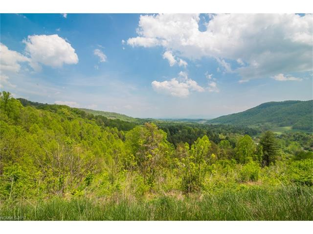 99 Greasy Cove Road, Leicester, NC 28748