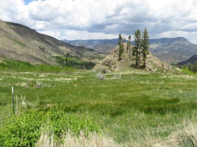 243 Forest Circle, South Fork, CO 81154