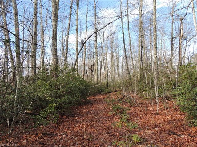 199 Forest Brook Drive, Black Mountain, NC 28711