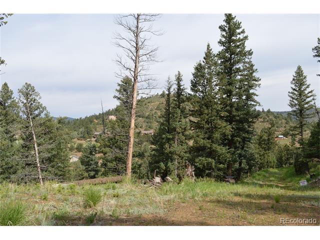 1180 Elk Valley Drive, Evergreen, CO 80439