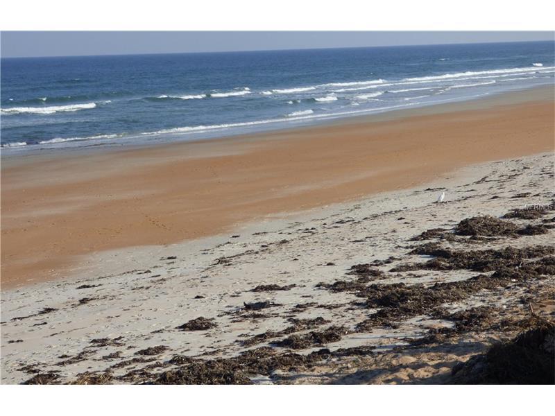 19 BRIGGS DRIVE, ORMOND BEACH, FL 32176