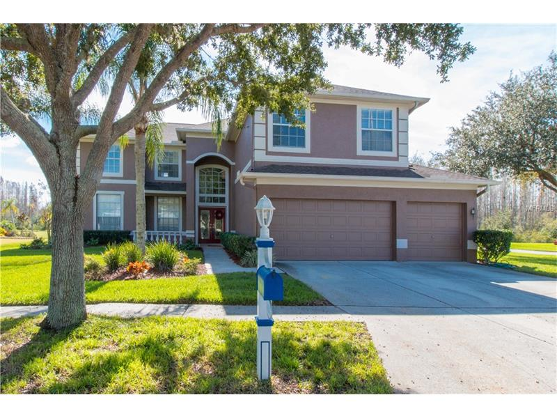 4326 HARBOR LAKE DRIVE, LUTZ, FL 33558