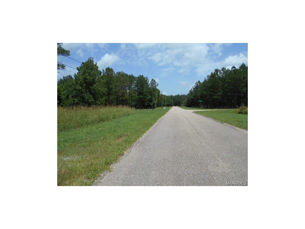 400 Split Bark Drive, Cecil, AL 36013