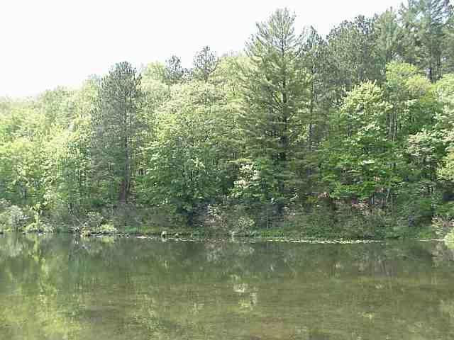 Lot 13 Pine Lake Rd, Iron River, WI 54847