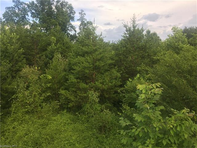 000 Bills Creek Road, Lake Lure, NC 28746