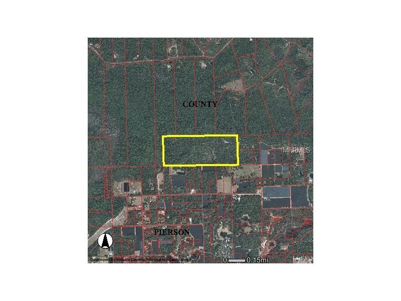BURNSED, PIERSON, FL 32180
