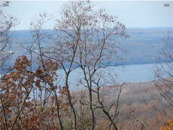 4419 SATTERLY HILL ROAD, PARCEL 8, Hector, NY 14818