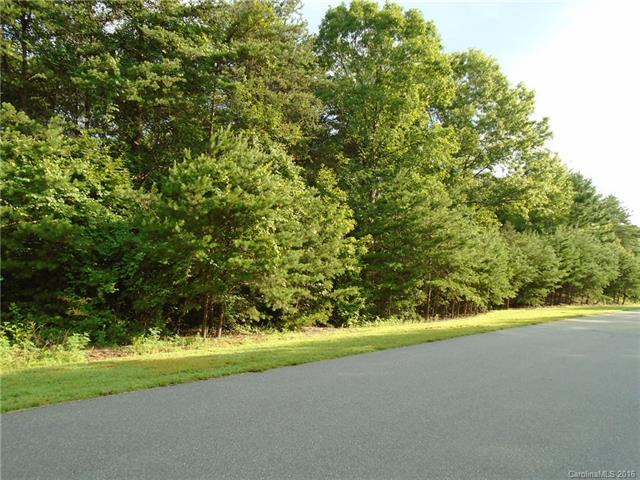 1684 Parkside Drive, Catawba, NC 28609