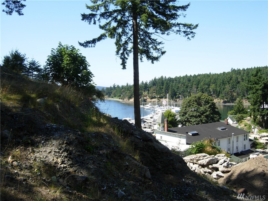 110 Ada's Alley Lot 54, San Juan Island, WA 98250