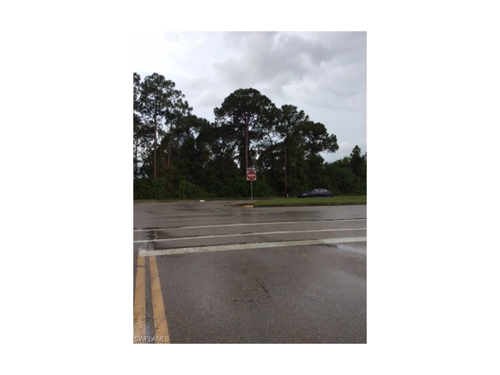 Dual Road Access RD S, LEHIGH ACRES, FL 33973