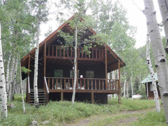 543 Pagosa Ave, Jasper, CO 81144