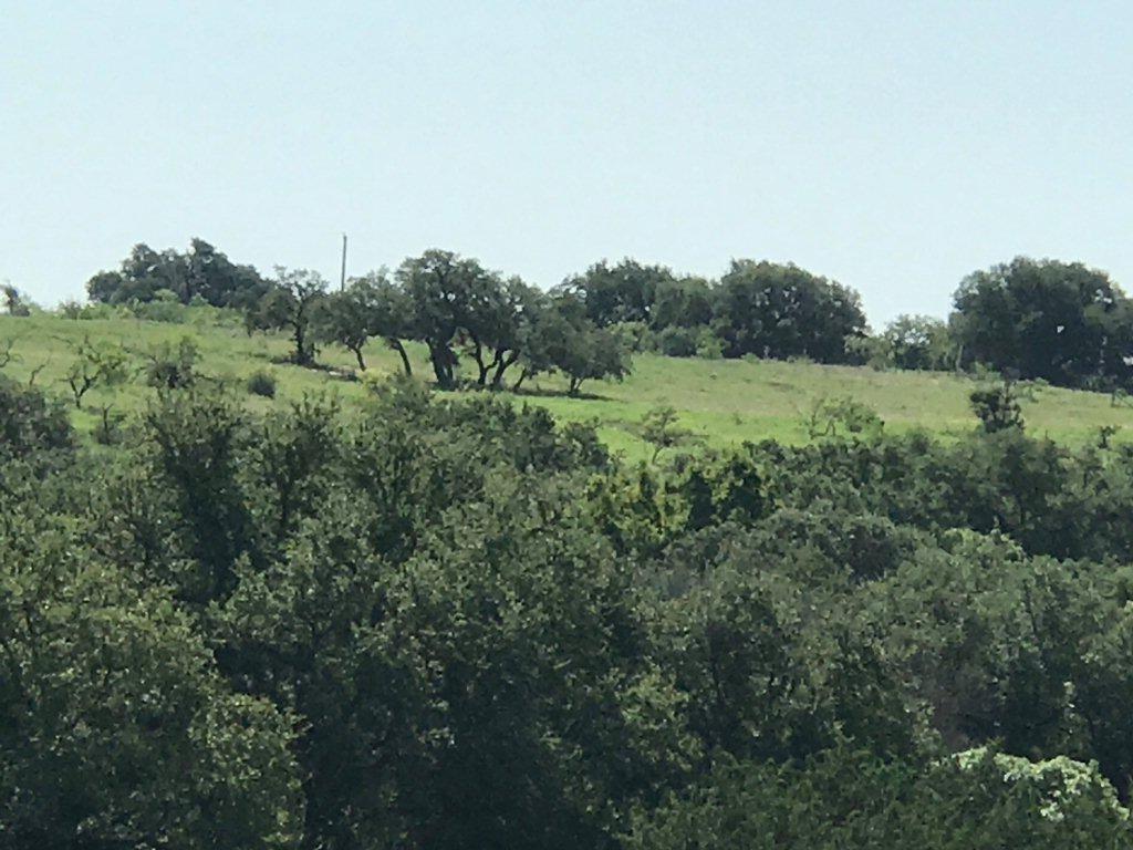 TBD County Rd 238, Comanche, TX 76442