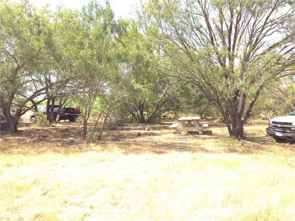 1388 County Road 227, Falls City, TX 78113