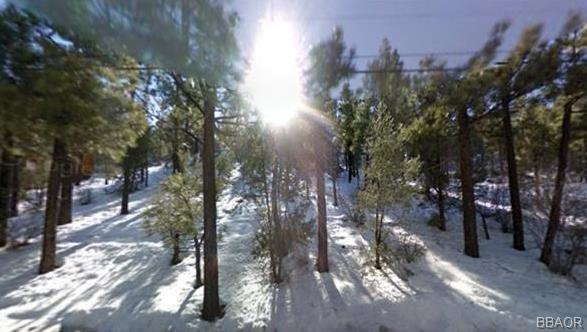 Shay Road, Big Bear City, CA 92314