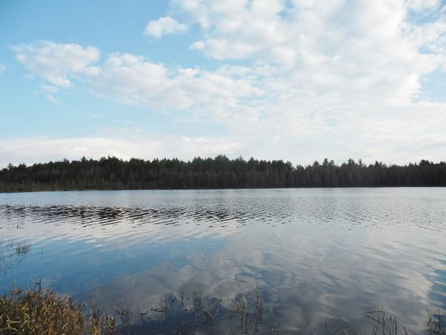 160 Acre MYERS RD, Tomahawk, WI 54487