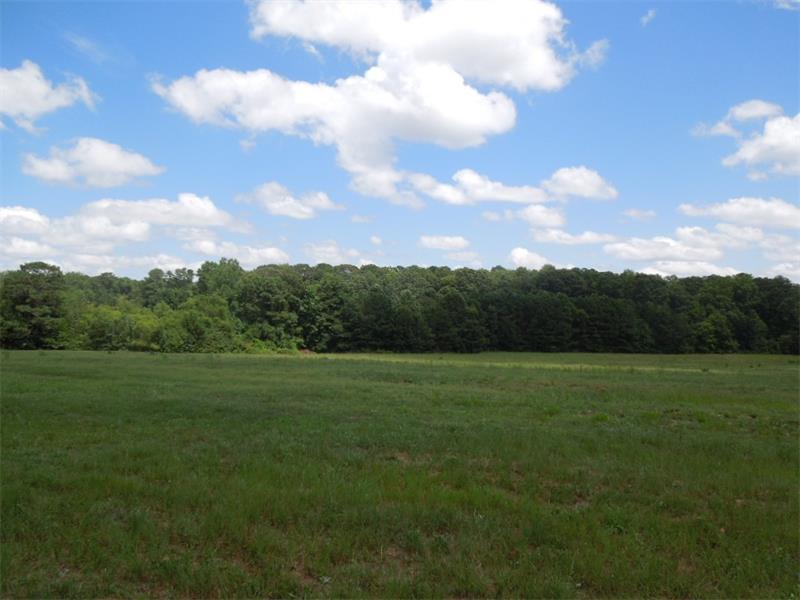 4146 Highway 5, Douglasville, GA 30135
