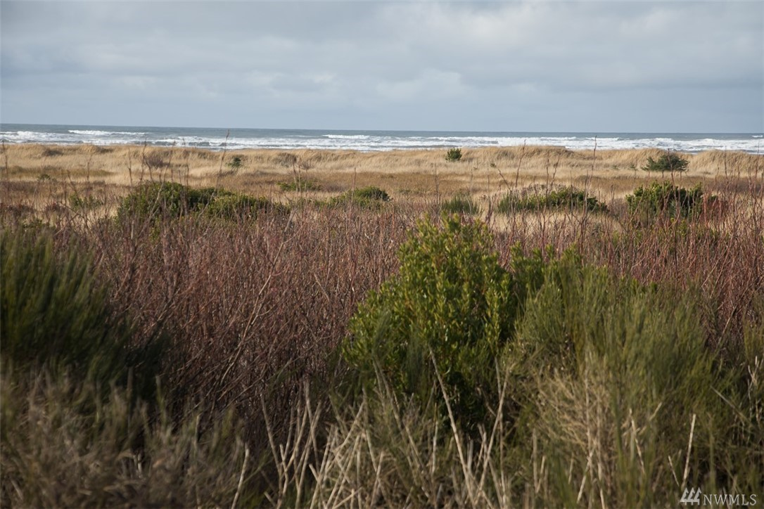 72 Dunes Lane, Ocean Shores, WA 98569