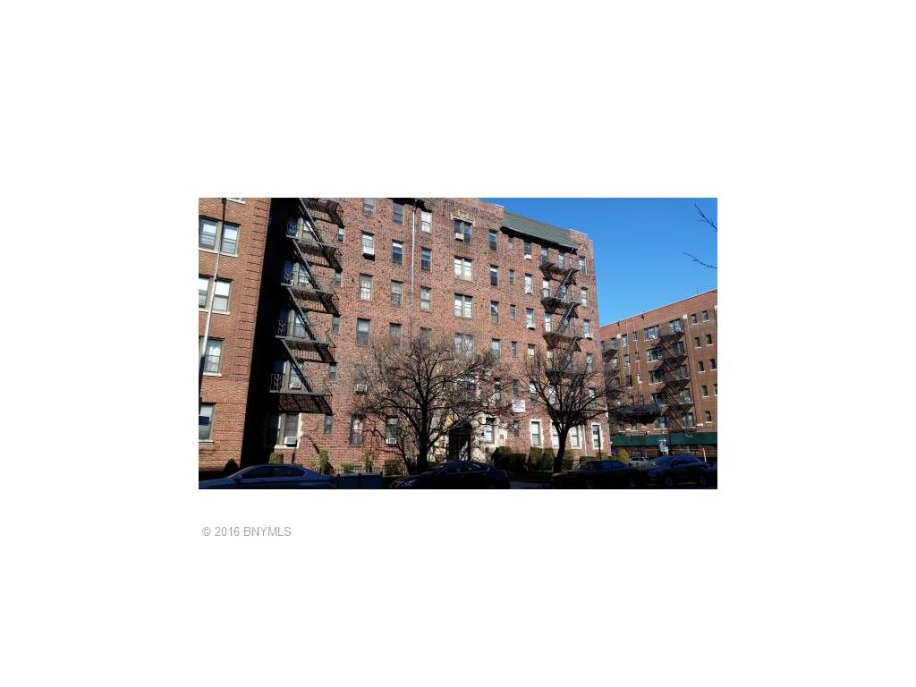 2515 Glenwood Road Road 5E, Brooklyn, NY 11210