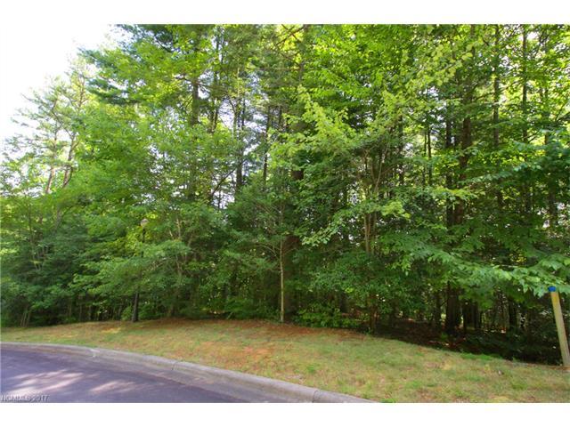 M139 Camptown Road M139, Brevard, NC 28712
