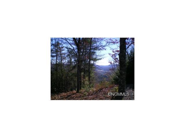 M86 Pine Mountain Trail M86, Brevard, NC 28712