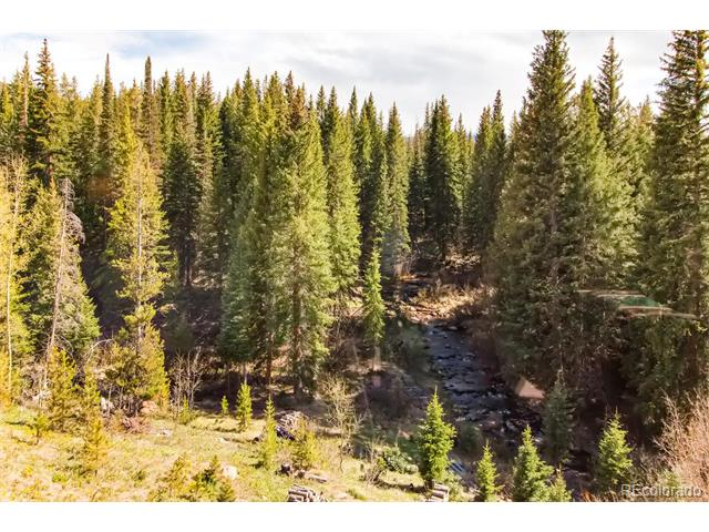 3881 County Road 8, Fraser, CO 80442