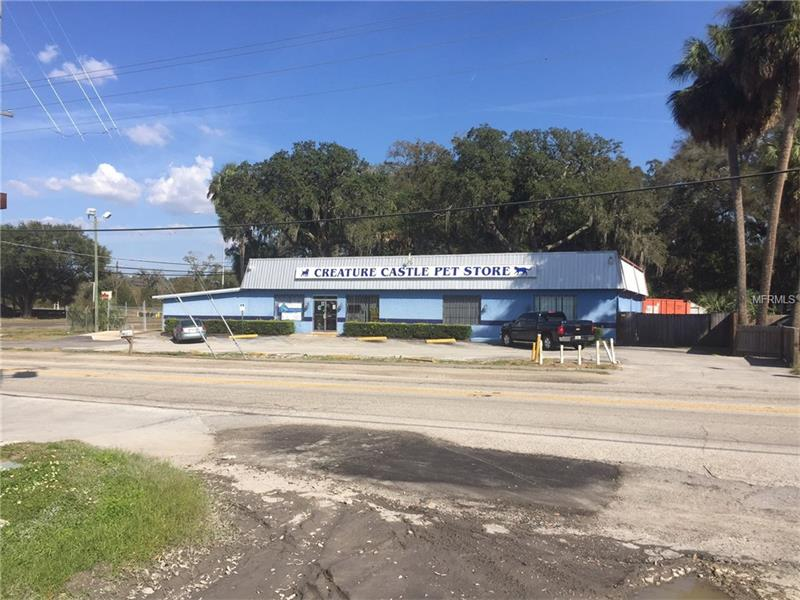 101 S SAINT CLOUD AVENUE, VALRICO, FL 33594