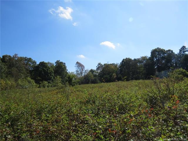 Antietam Road, Scotts, NC 28699
