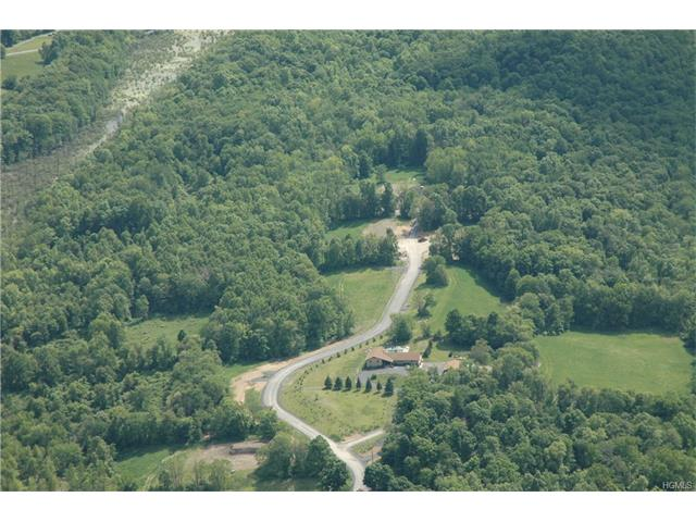 8 Fox Hill Court, Thompson Ridge, NY 12566