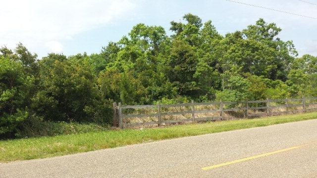 Laurent Rd, Magnolia Springs, AL 36555