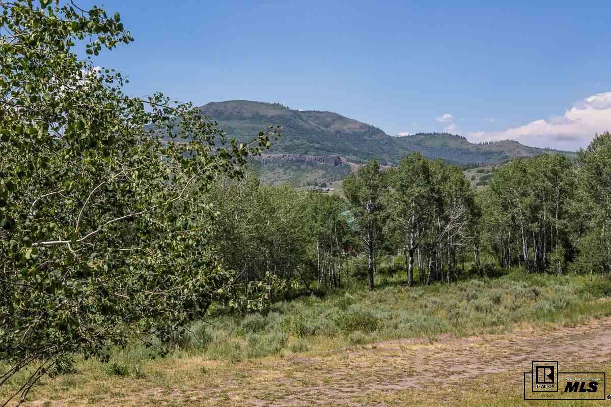 23890 Arapahoe Road, Oak Creek, CO 80487