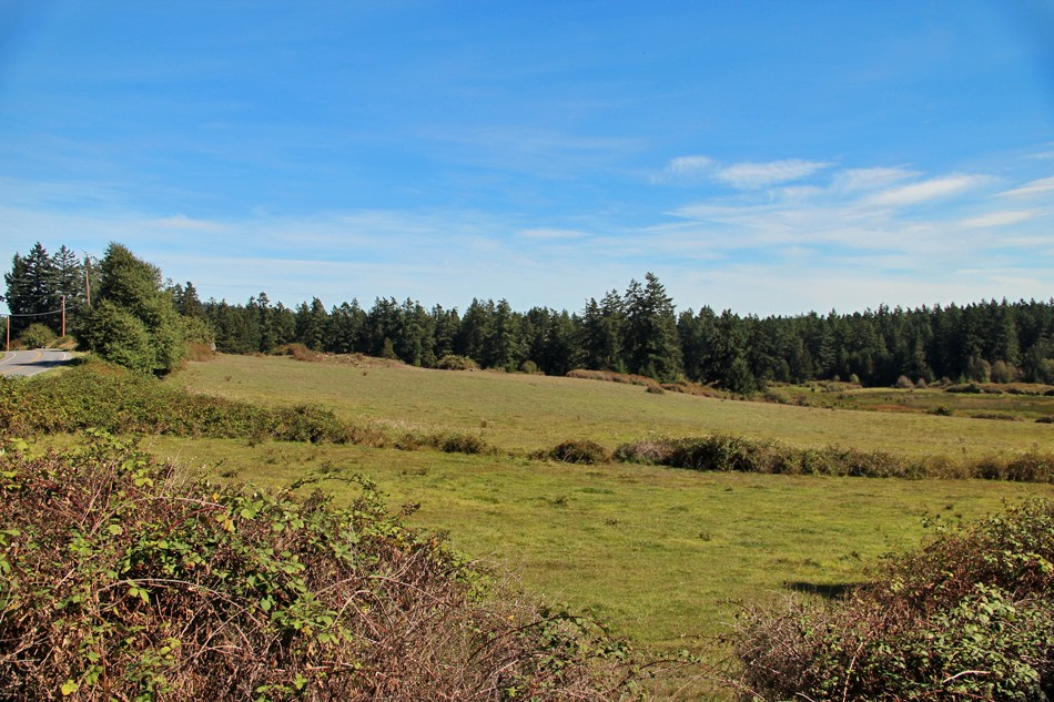 4543 Beaverton Valley Rd, San Juan Island, WA 98250