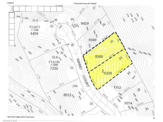 TBD Wanei Court Unit 16/Lots 24 & 25, Brevard, NC 28712