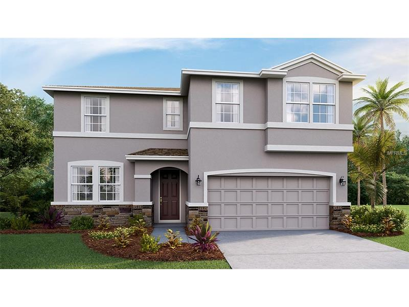 11408 WARREN OAKS PLACE, RIVERVIEW, FL 33578