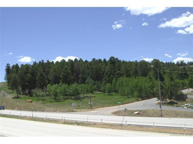 10995 US Highway 285, Conifer, CO 80433
