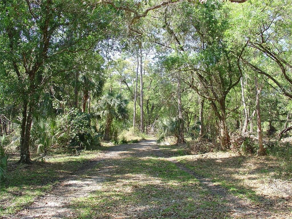 975 Silver Lake RD, LABELLE, FL 33935