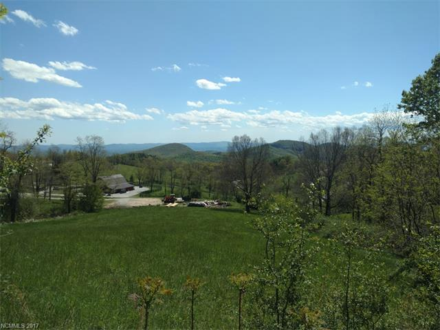 Spring Rain Drive 16, Hendersonville, NC 28792