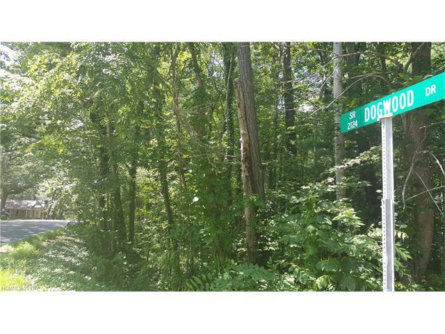 999999 Dogwood Drive, Weaverville, NC 28787