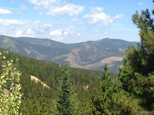 Spring Gulch, Idaho Springs, CO 80452