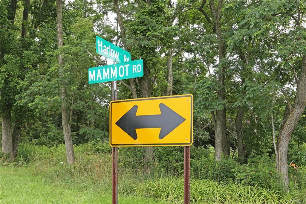 VL Mammot Road, Darien, NY 14040