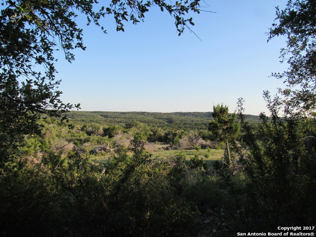 469 COUNTY ROAD 264, Mico, TX 78056
