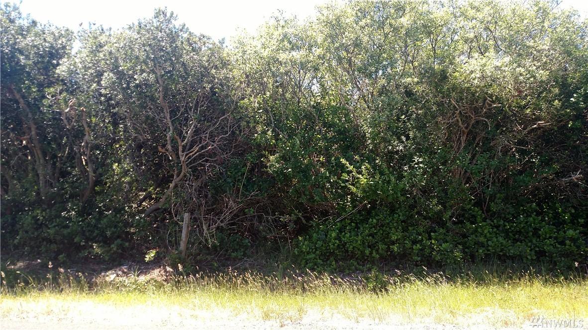 341 S Wynoochee Dr SW, Ocean Shores, WA 98569