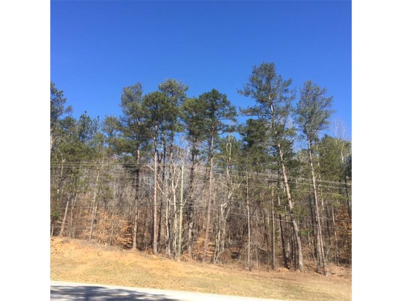 Highway 166, Douglasville, GA 30135