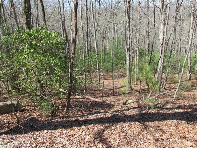 If privacy is what you are looking for, here it is!  Two adjoining lots are available in a quiet, established neighborhood, conveniently located near downtown Hendersonville, Historic Flat Rock and Dupont State Park.  Located on a private road, maintained by the HOA, with electricity at the property line.  With trees cleared, long range views abound!  Small creek on property.  Modular homes are allowed.