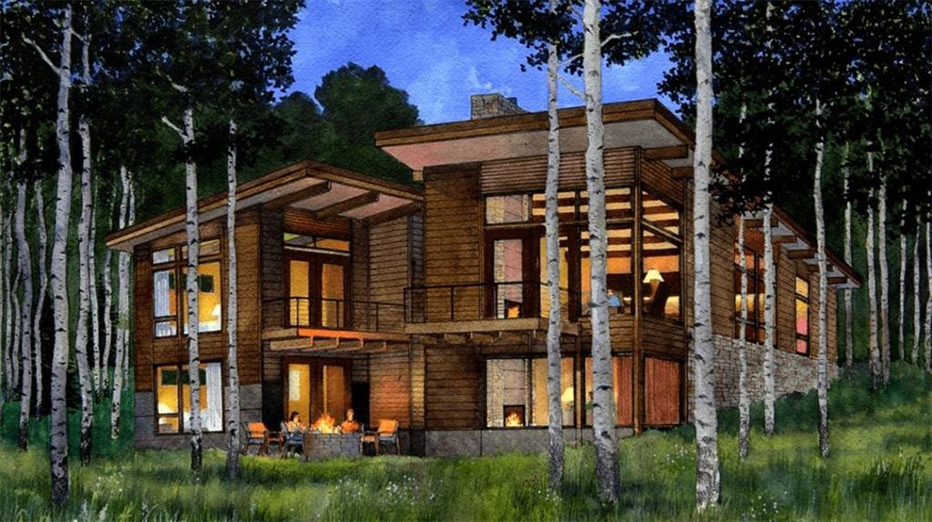 Young Preserve ROAD, SILVERTHORNE, CO 80498