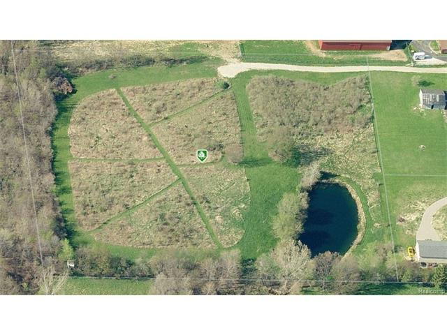 V/L HONERT RD, Brandon Twp, MI 48462
