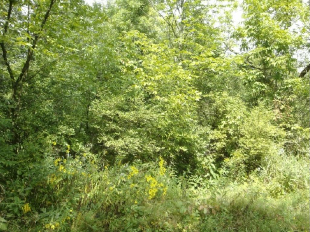 20.5 Acres Fire Monument Road, Hinckley, MN 55037