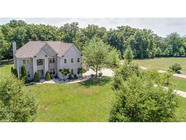 244 Bless Us Drive, Wentzville, MO 63385