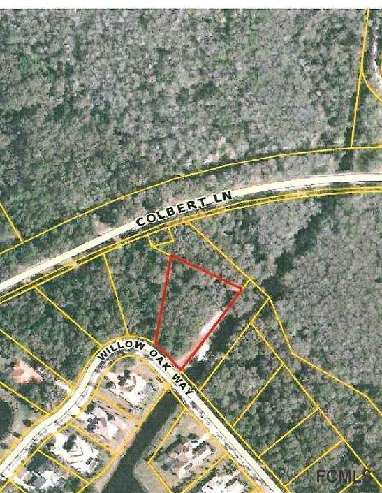 169 Willow Oak Way, Palm Coast, FL 32137